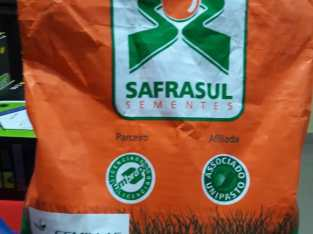 Se vende semillas de pastos