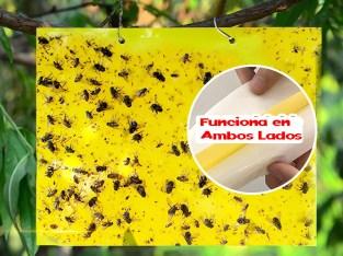 Trampa cromática adhesiva Amarilla