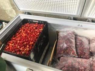 Tenemos fresas empacadas