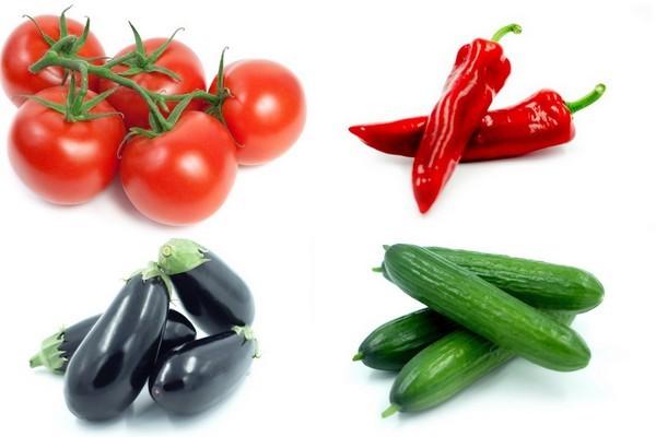 Nuevas variedades de tomate, pimiento, pepino y berenjena