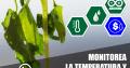 Automatiza tu cultivos (para productores de bajos recursos)