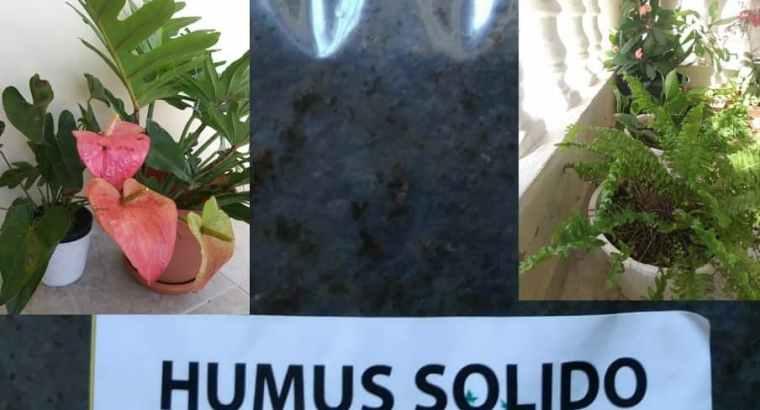 Humus de Lombriz   Abono Orgánico