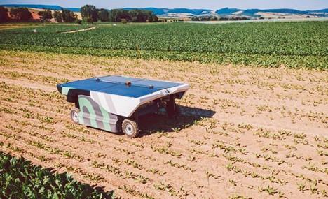 Una nueva frontera: robot eléctrico para desmalezado de precisión