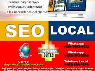 POSICIONAMIENTO WEB EN GOOGLE EN SANTO DOMINGO DAPHNIS DUTES – 809-316-1975
