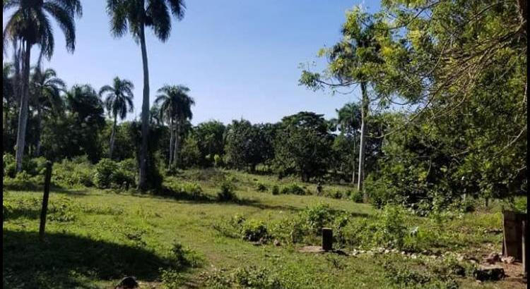FINCA DE 1,162 TAREAS DE VENTA EN SAN PEDRO DE MACORÍS