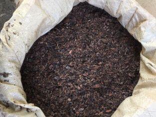 Sustrato de cacao