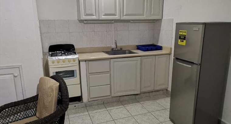Alquiler Apartamento Amueblado De 1 Habitación, No Parqueo
