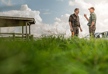 Farmers in a field