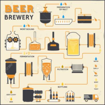 Elaboracion de cerveza en casa copia