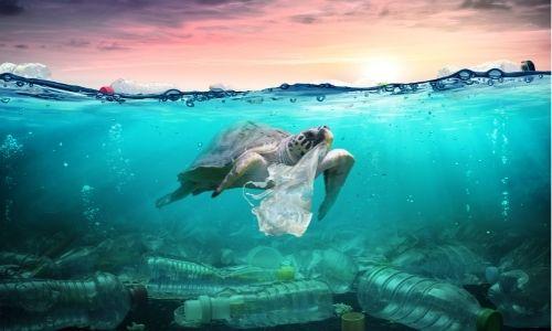 EL mar contaminado de plásticos
