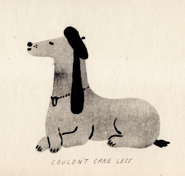 cães amor perguntas e respostas
