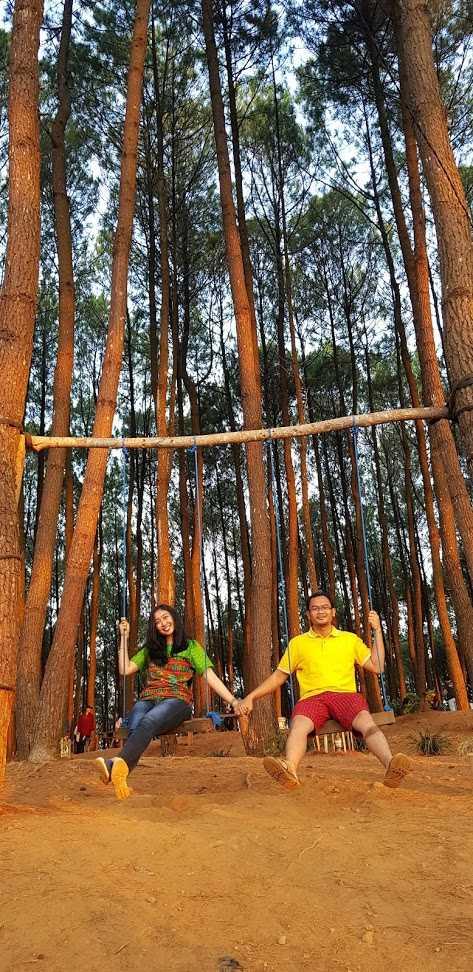 Wisata Alam Hutan Pinus Yogyakarta