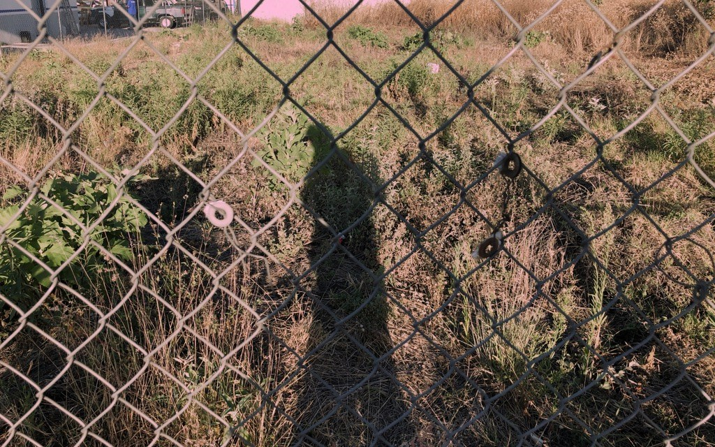 The Pink Maze – 11