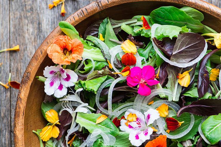 Flores Comestibles 7 Recetas Para Lucirte Como Un Profesional