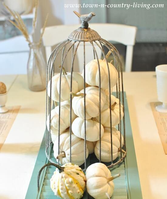 decorar jaulas de pájaros