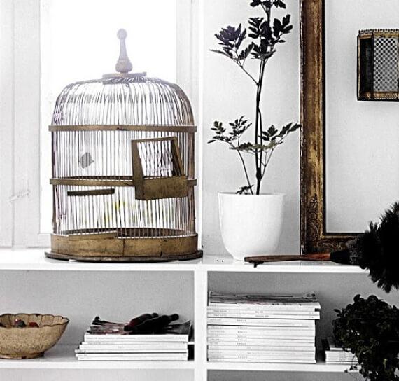 ideas para decorar jaulas de pájaros