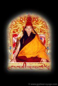 Tsultrim Gyamtso Rinpoche (Gyalwai Nyugu)