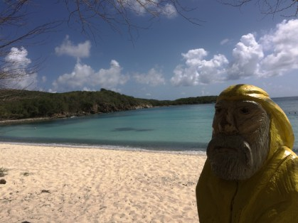 Captain Ahab of Ahab's Adventures looking at the ruins near Little Lameshur Bay on St. John U.S. Virgin Islands 2016