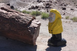 Captain Ahab of Ahab's Adventures at the Petrified Forest National Park in Arizona 2011