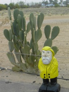 Captain Ahab of Ahab's Adventures with his first Cactus on his Cross Country Road Trip of 2006