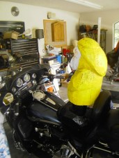 Captain Ahab of Ahab's Adventures on his Harley on his Cross Country Road Trip of 2006
