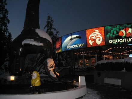 Captain Ahab of Ahab's Adventures at the Vancouver Aquarium British Columbia Canada 2006