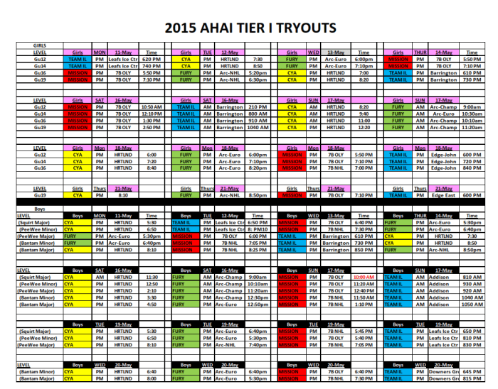 2015 AHAI TIER I TRYOUTS GRAPHIC