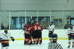 hinsdale-celly