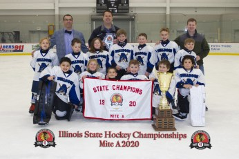 Chicago Bulldogs - Youth Tier II 8U A Champions Photo Credit: Photos By Sully