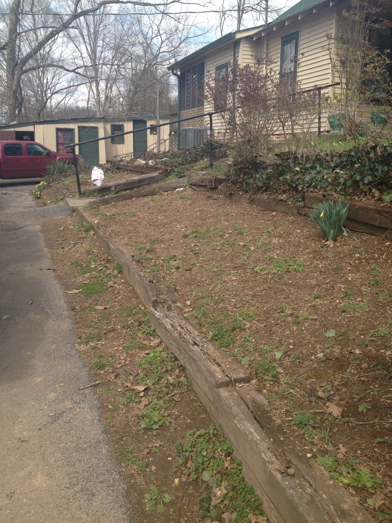 spring flower bed clean up