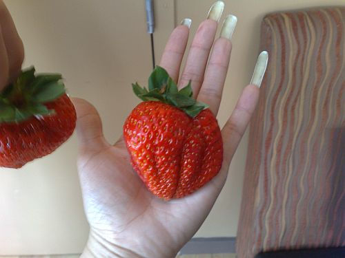 Big strawberry 3