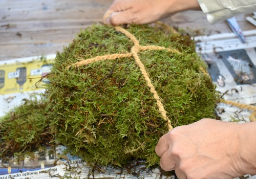 How to make an easy diy moss pumpkin using old newspapers