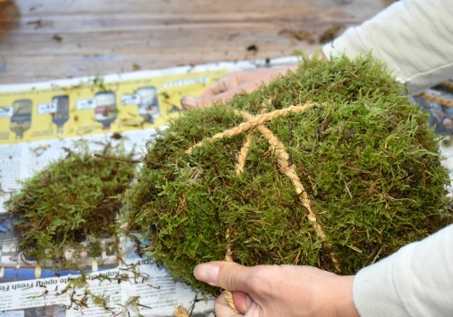 DIY Moss Pumpkins - easy step by step tutorial