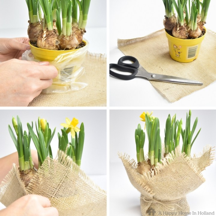 DIY Spring Bulb Plant Arrangement: Use spring bulbs, feathers and straw to create a contemporary and natural looking home decor idea for the Spring and Easter period.