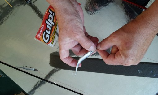 Cid setting up weedless lures.