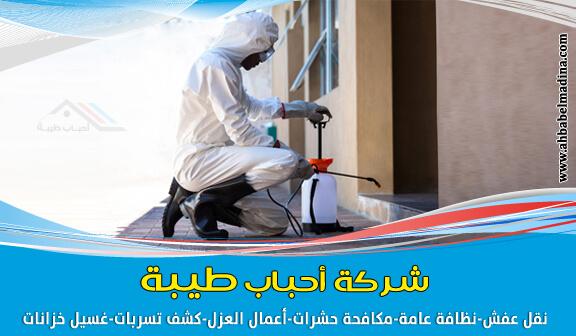 أرخص شركة رش مبيدات بالمدينة المنورة هي شركتنا