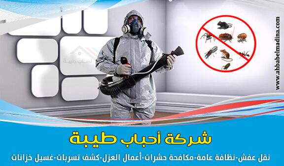 افضل شركة مكافحة حشرات بالمدينة المنورة ورش حشرات – 0557763091