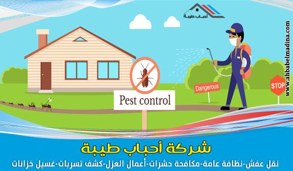 صورة ارخص اسعار شركة مكافحة حشرات بالجبيل ورشّ حشرات