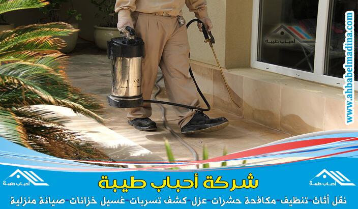 شركة مكافحة حشرات بالرس والتخلص من النمل الابيض ورش حشرات البق والصراصير والفئران