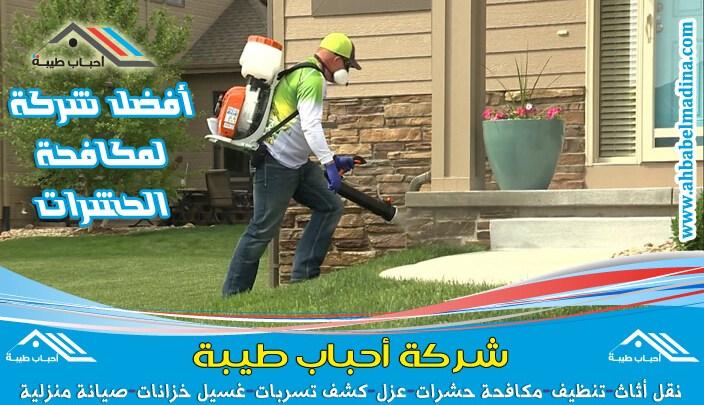 Photo of شركة مكافحة حشرات ببريدة & أفضل رش الحشرات بالقصيم