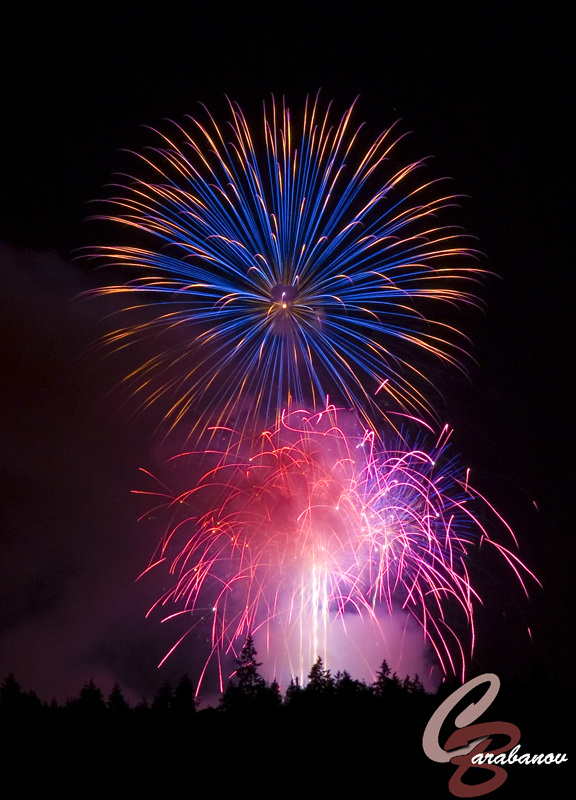 14 Images of Fireworks That Will Get You Psyched For The Fourth