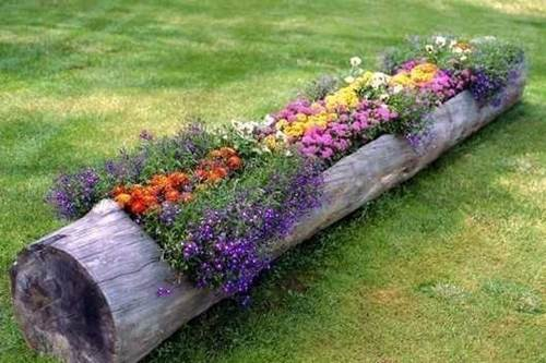 Hollow Log Planter