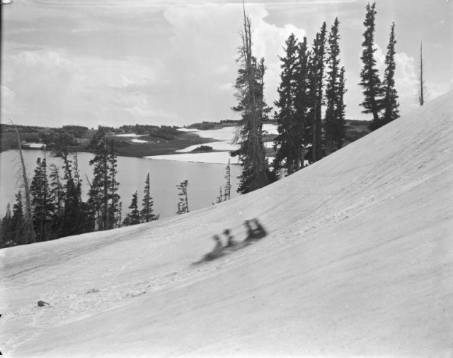 Four children on a sledding hill overlooking Telephone Lake in the Snowy Range.   Ludwig Svenson Collection, Negative #14/32.