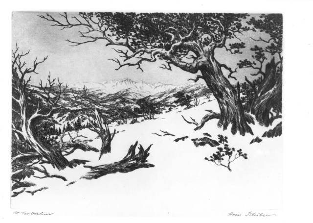 Drawing in pencil of trees with mountains in the background and snow on the ground.