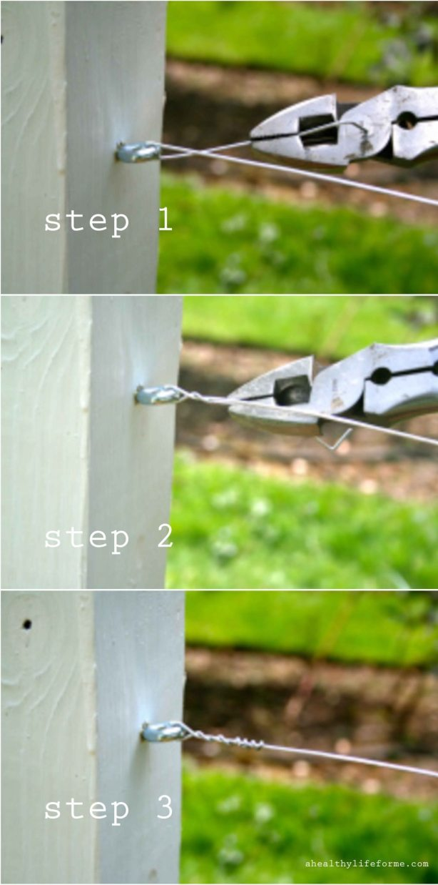 How to twist wire for support on blackberry poles ahealthylifeforem.com