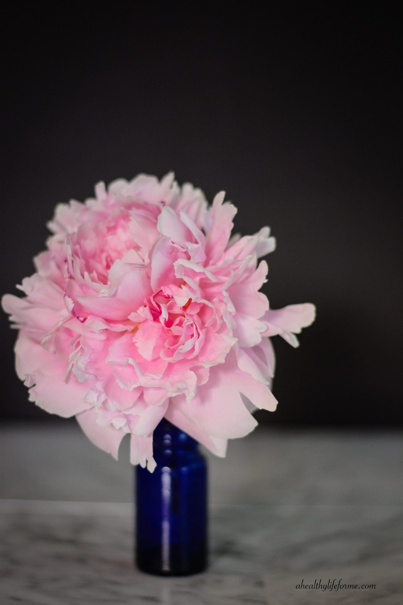 Peonies A Love Affair A Healthy Life For Me