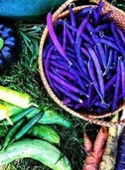 Colorful-Produce
