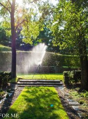 Sprinkler watering trees in garden