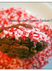 Chocolate Peppermint Sandwich