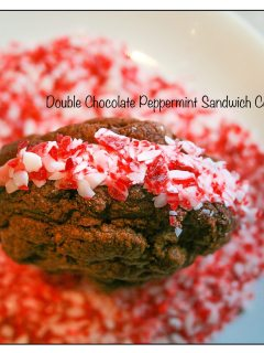 Double Chocolate Cookie Peppermint Sandwich